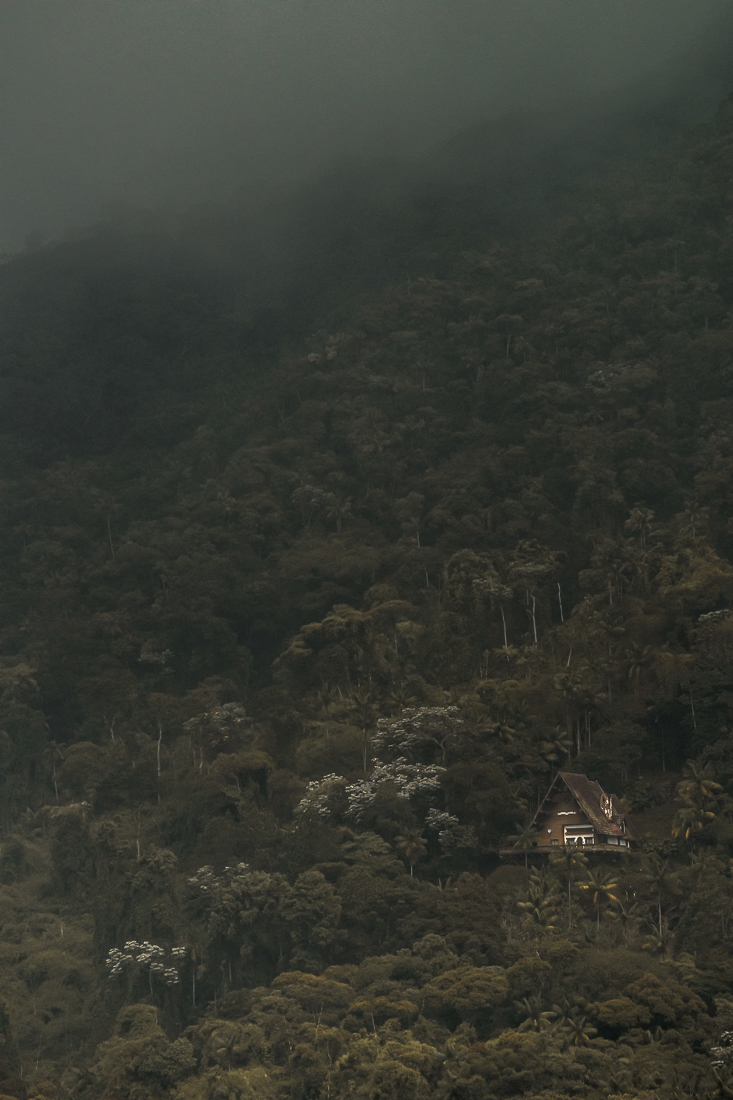 Mystery and Memories in the Brazilian High Mountain Rainforest