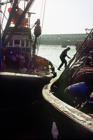 Fishing port of Essaouira,Morocco