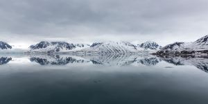 Arctic Reflections