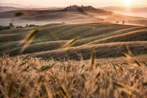 Crete Senesi-Created for photography