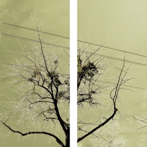 "Diptychs from group of works ""Industrial Peace"""