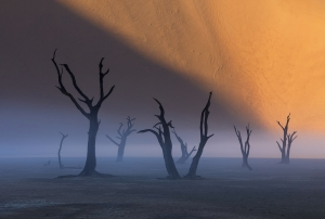 Deadvlei in fog after a rare storm