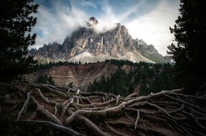 Window on the Dolomites