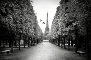 The Paris You Dream Of