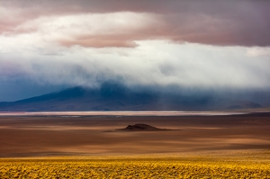 The Altiplano