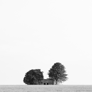 The Cottage in the Fields