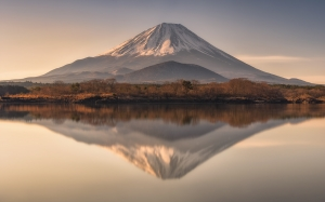 Spirit of Mount Fuji