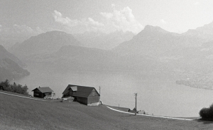 Two houses near the lake in Buergenstock